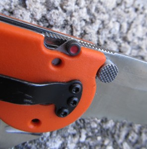 Also visible is the aggressive checkering on the thumbstud.